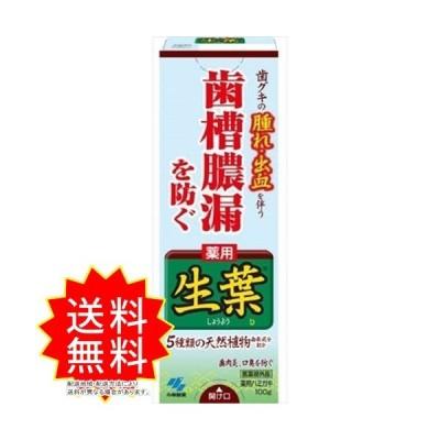 生葉b 小林製薬 歯磨き 通常送料無料