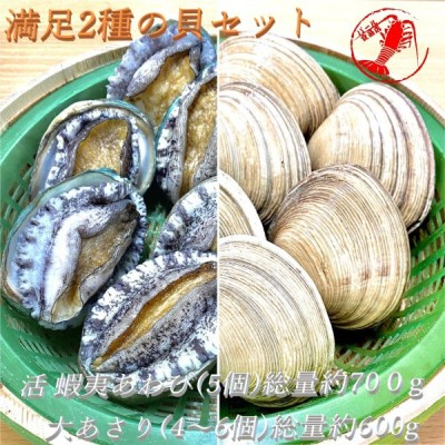 (活)蝦夷あわび5個(総量約350g)/大あさり4〜6個(総量約600g) 満足2種の貝セット【鮑 鰒 アワビ 大アサリ】