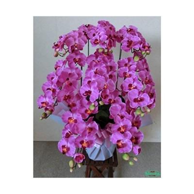 フラワーデザイナー制作の胡蝶蘭【光触媒】胡蝶蘭-濃いピンク8本立て(造花)ウィルス 細菌 有害物質を分解?