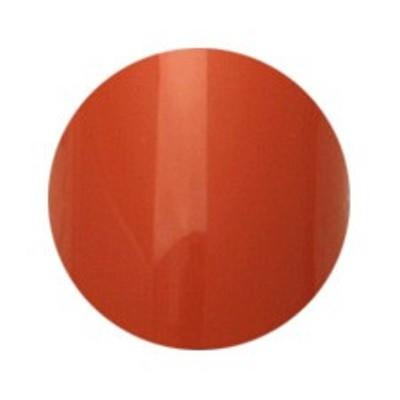 Putiel(プティール) カラージェル 2g 152 アースオレンジ