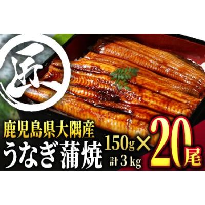 727-1 鹿児島県大隅産うなぎ蒲焼3kg[150g×20尾]