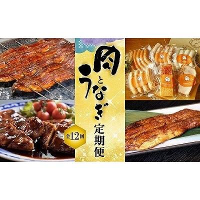 うなぎとお肉 定期便(全12回お届け) H028-021
