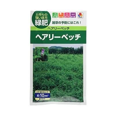 【緑肥】 タキイ種苗 ヘアリー ベッチ