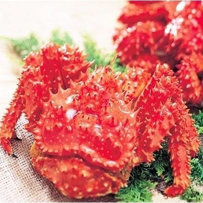 【北海道根室産】花咲がに姿1.5kg×1尾 C-01023