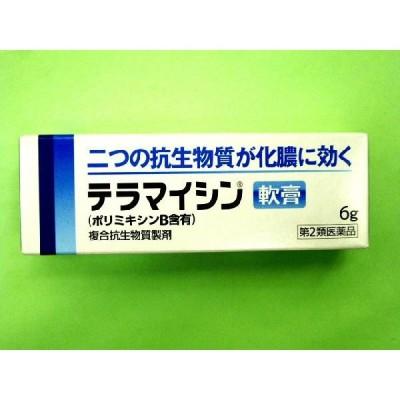 テラマイシン軟膏 6g(第2類医薬品)使用期限:発送日より半年以上