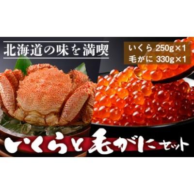 北海道の味を満喫♪いくらと毛がにセット<マルタカ高橋商店>【PP047】