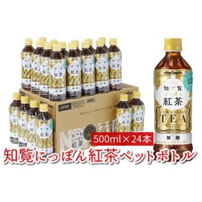 051-07 知覧にっぽん紅茶ペットボトル24本