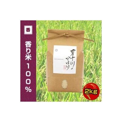 令和2年度産 香り米 (神の香〜カミノカ) 100% 2kg 四万十川のかほり  仁井田米   (品種名:汢ノ川1号) 新品種 ぬたのかわ