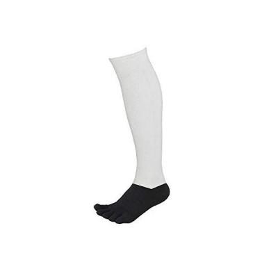 5本指 2足組 野球 アンダーソックス 2Pセット パンダソックス 靴下 アンダーストッキング ハイソックス 男女兼用 野球 日本製 25-