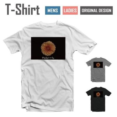 Tシャツ メンズ レディース 半袖 おしゃれ ブラック ホワイト グレー 綿100% コットン 春 夏 服 カジュアル 風景 景色 ハワイアン