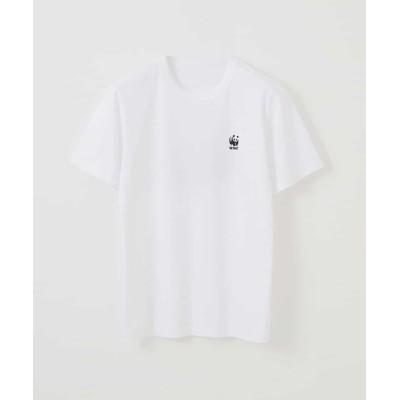tシャツ Tシャツ カットソー(WWF)
