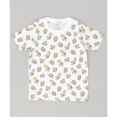 tシャツ Tシャツ ミニオン×ホークス Tシャツ / 総柄 , KIDS