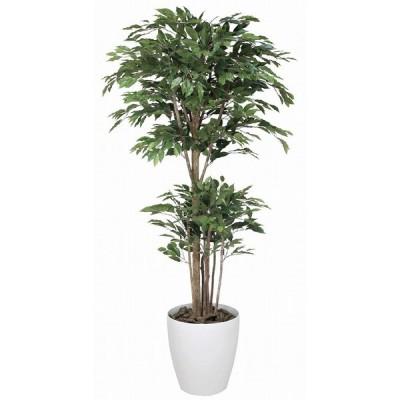 《アートグリーン》《人工観葉植物》光触媒 光の楽園 トロピカルベンジャミン1.6