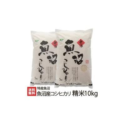令和2年度米 魚沼産 コシヒカリ 精米 10kg(5kg×2) 特産魚沼/ギフト・贈り物・内祝いにも!のし(熨斗)無料/送料無料