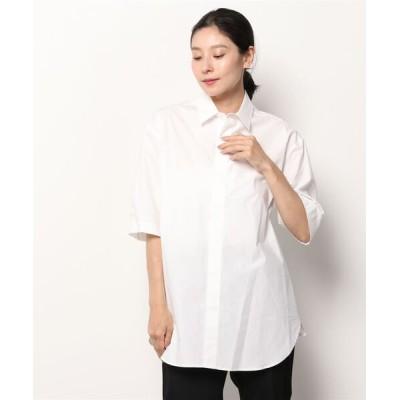 シャツ ブラウス 603 レギュラーカラービックシャツ