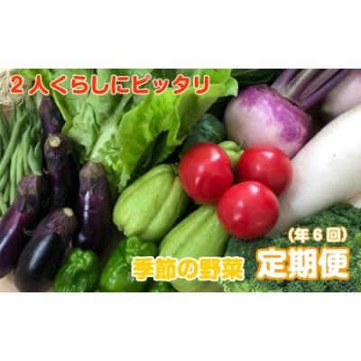 NK7000【お野菜定期便】2人暮らしにぴったり 南国土佐のお野菜「食べきりサイズ」(9~10品 年6回)