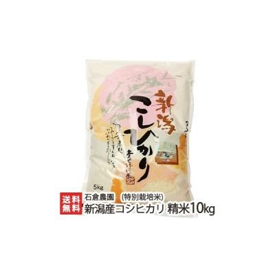令和3年度米 新潟産 従来品種 特別栽培米コシヒカリ 精米10kg(5kg×2)石倉農園/御歳暮にも!ギフトにも!/のし無料/送料無料
