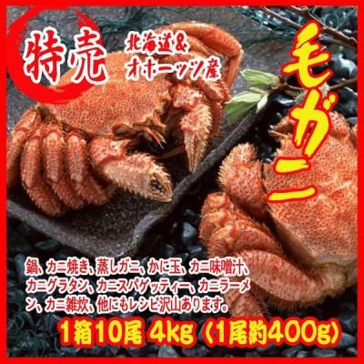 毛ガニ 1箱10尾 4kg(1尾約400g)北海道&オホーッツ産 カニ 蟹 かに  化粧箱入
