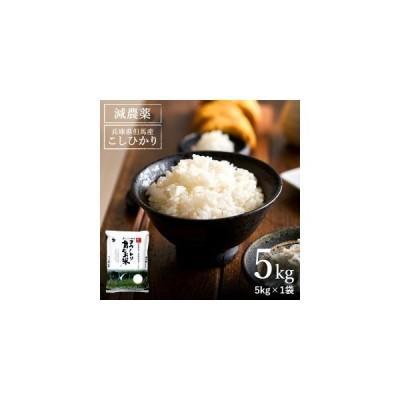ふるさと納税 コウノトリ育むお米減農薬 【5kg×1袋】(94-004) 兵庫県豊岡市