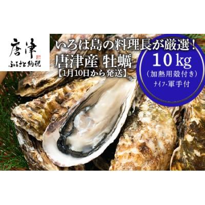 【1月10日から発送】いろは島の料理長が厳選!唐津産 牡蠣10kg ナイフ 軍手付 (加熱用)殻付き かき カキ 殻付き牡蠣 養殖 まがき 貝 海鮮 シーフード