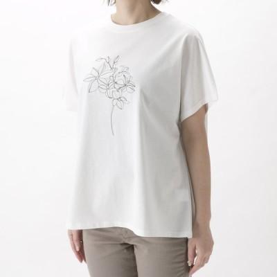 エルドアンジュ Aile de ange 線画デザインTシャツ ADA2-0052F ギフトラッピング無料
