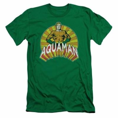 Tシャツ ディーシーコミックス Aquaman Arms Akimbo DC Comics Licensed Adult Slim Fit Shirt S-XXL