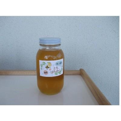 トチ蜂蜜 1200g