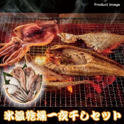 ギフト 氷温乾燥 一夜干し 詰め合わせ セット 惣菜 海鮮 魚介 内祝 お返し お礼