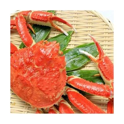 超特大ズワイ蟹姿×1尾札幌海鮮本舗うまい堂 ボイル済 浜茹で 特大 極上 身たっぷり かにしゃぶ 堅蟹
