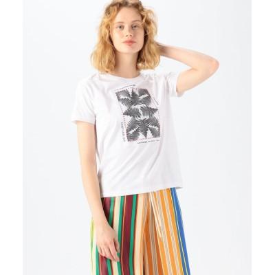 (CABaN/キャバン)CABaN Costarica アートTシャツ/レディース 11ホワイト