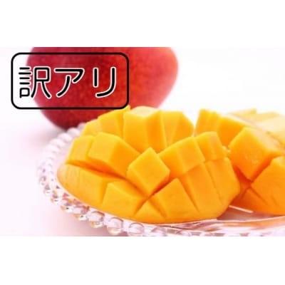 【訳あり】無加温栽培『完熟マンゴー』2~3玉(1kg以上)