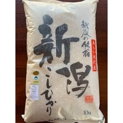 【令和2年産】新潟県矢代産コシヒカリ 10kg