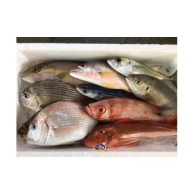 K-10 以布利定置網旬の朝獲れ鮮魚詰め合わせ定期便【5回】(寄附金100,000円コース)
