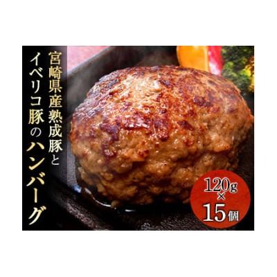 AC20-1209 宮崎県産熟成豚とイベリコ豚のハンバーグ120g×15個