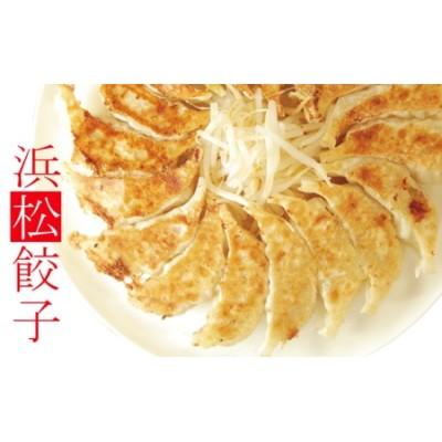 知久屋「ちくや」浜松餃子どっさりセット(無添加ぎょうざ200個)