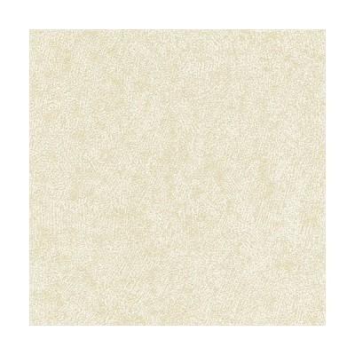 シンコー/生のりつき壁紙・クロス BA5031