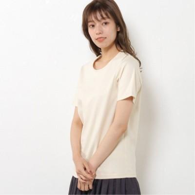 プレミアムコットン半袖Tシャツ(無地・ボーダー) クリーム M L LL