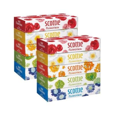 日本製紙クレシア スコッティ ティシュー フラワーボックス 320枚(160組) 5箱入×12パック(60箱)