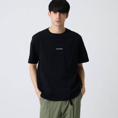 ドレステリア DRESSTERIOR ミニロゴ天竺コットン(綿)Tシャツ (ブラック)