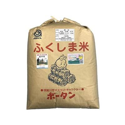 新米産地限定 令和元年産福島県須賀川市泉田産コシヒカリ25kg 白米