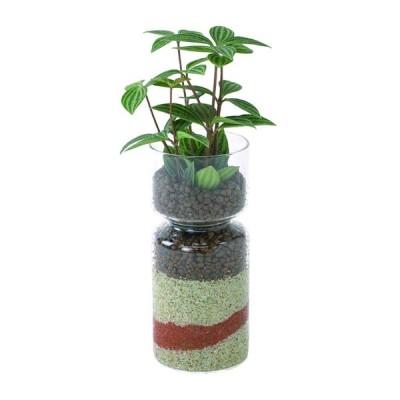 SPICE スパイス SPICE OF LIFE ラボガラスライン 観葉 植え込み カラーサンド ・ハイドロボール Lサイズ MUG17005 12個 | ガーデン 植物 観葉植物 水耕栽培