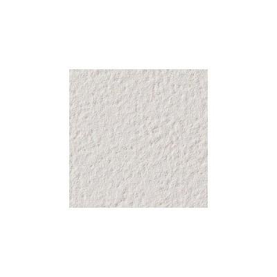 サンゲツ 壁紙 ファイン FE6130 92cm 1m長 糊なし