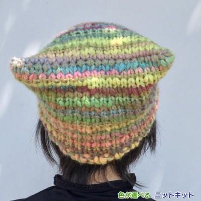 40%OFF! カテナマルティで編むねこ耳風帽子 手編みキット ナスカ 内藤商事 編みものキット 無料編み図