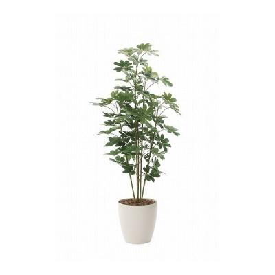 《アートグリーン》《人工観葉植物》光触媒 光の楽園 カポック1.8