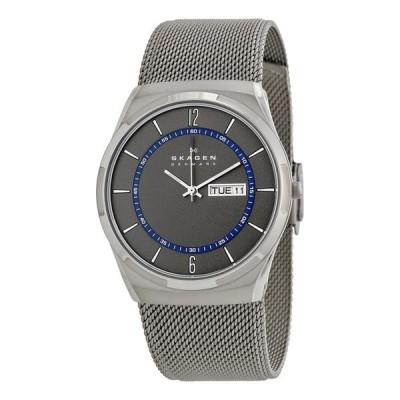 SKAGEN スカーゲン 腕時計 Aktiv Mesh Titanium アクティブ メッシュ チタニウム グレー×シルバー SKW6078 メンズ