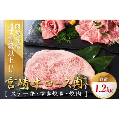 C70 宮崎牛ロース肉セット(ステーキ・すき焼き・焼肉)合計1.2kg
