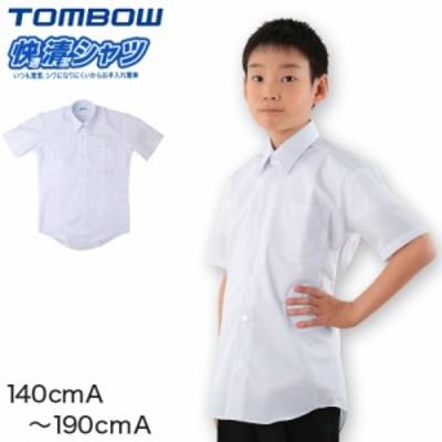 スクールシャツ カッターシャツ 半袖 男子 学生 シャツ 140cmA~190cmA (取寄せ)