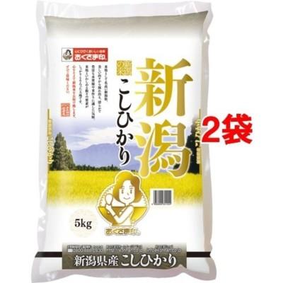 令和元年度産 新潟県産コシヒカリ(国産) (5kg*2袋セット/10kg)