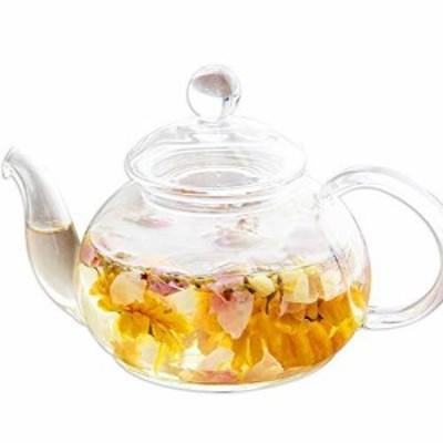 ティーポット 耐熱ガラス 中サイズ 満水 約600ml 茶こし付き 紅茶 電子レンジ対応 シンプル