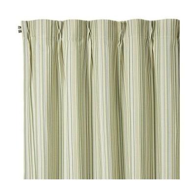 スミノエ カーテン サヴール 100×135cm グリーン 1枚入 G1005